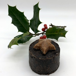 Raw Chocolate Christmas Pudding